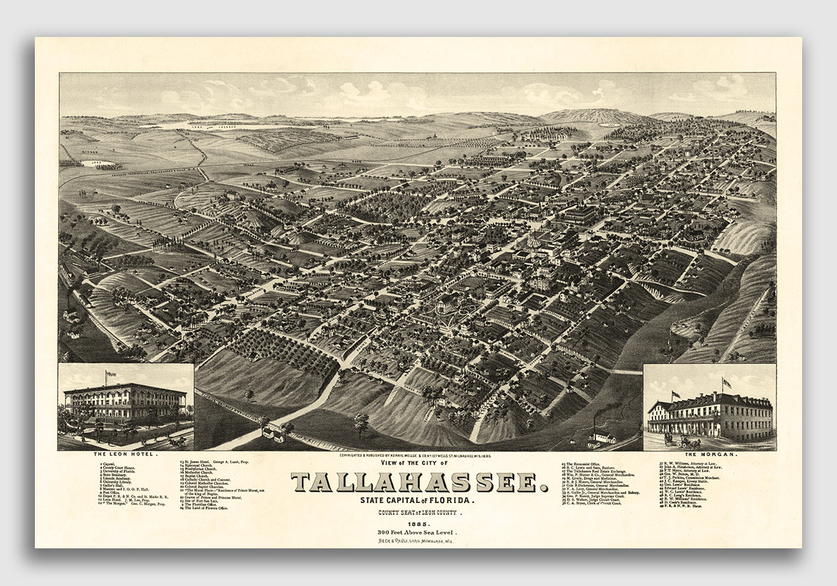 Details about Bird\'s Eye View 1885 Tallahassee Florida Vintage Style City  Map - 20x30