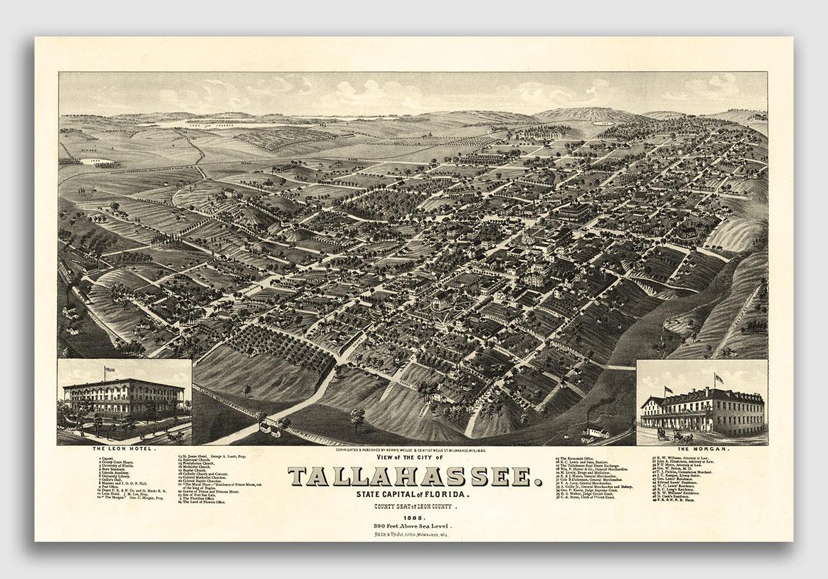 1876 Jacksonville Florida Vintage Old Panoramic City Map 18x24