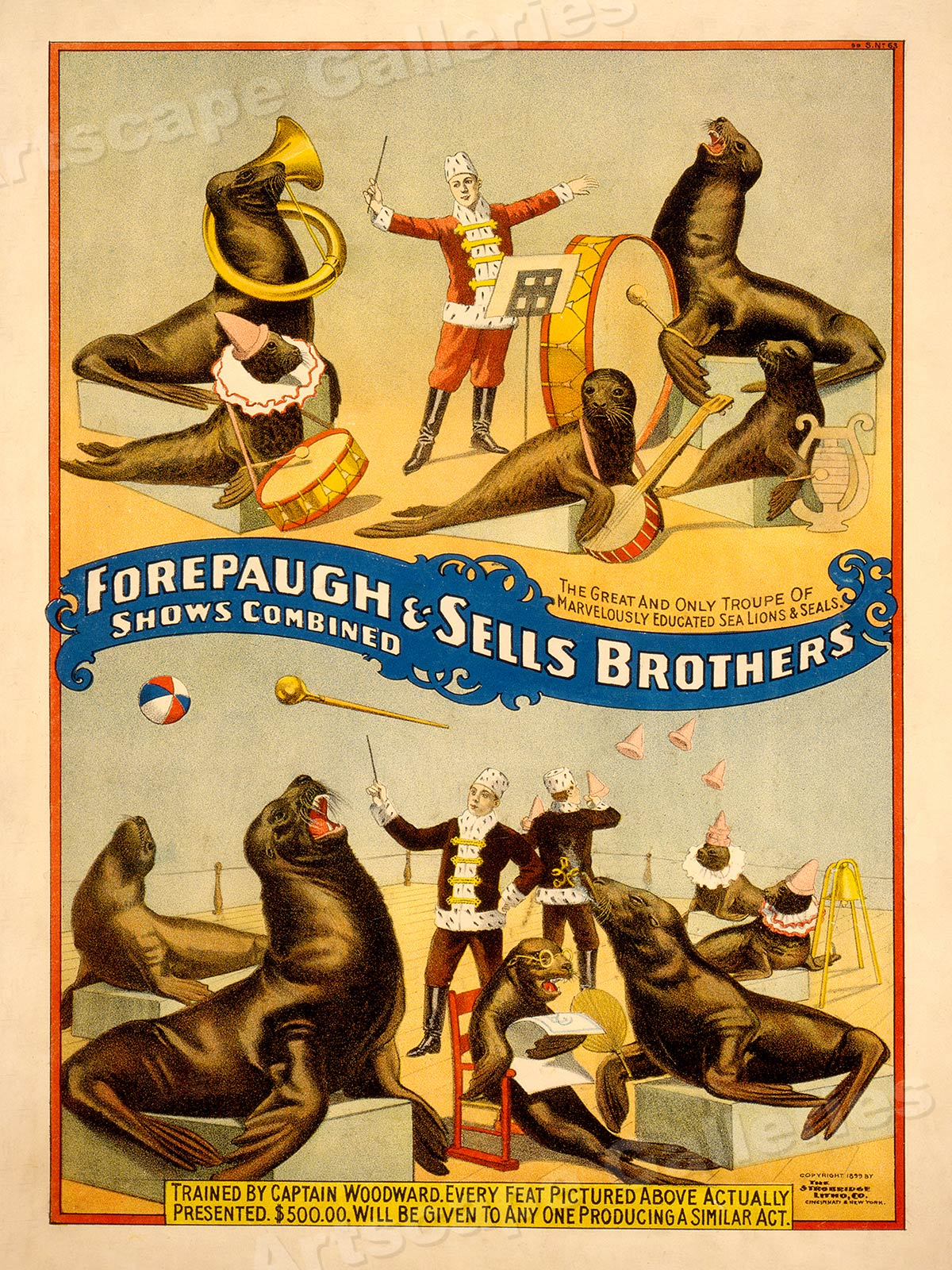 Sea Lions /& Seals Circus Poster 24x32 1890s Forepaugh /& Sells Circus